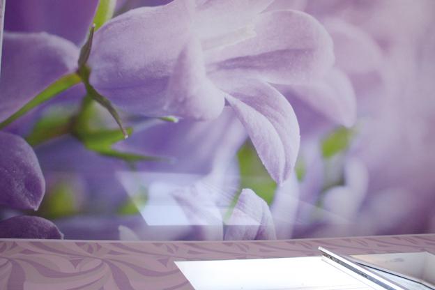 фотопечать орхидеи