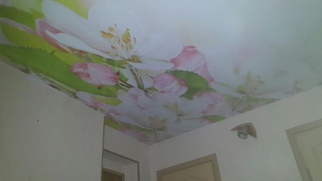 натяжные потолки Волгоград, отзывы монтаж, фото