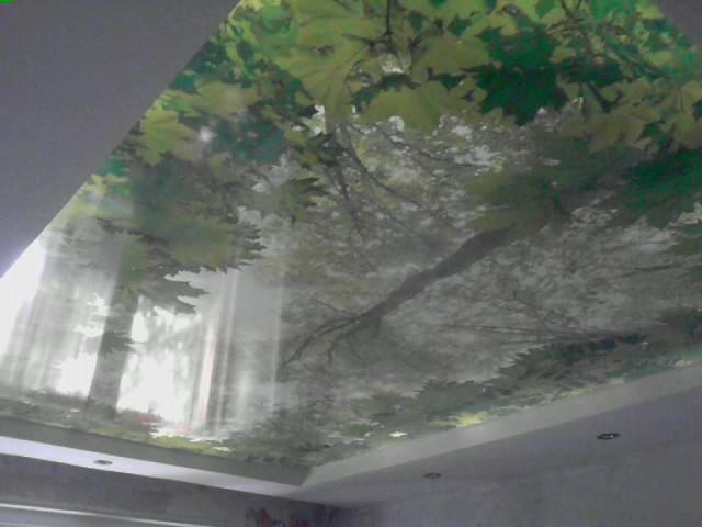 натяжные потолки фото установка цена двухуровневые матовые тканевые в Саратове