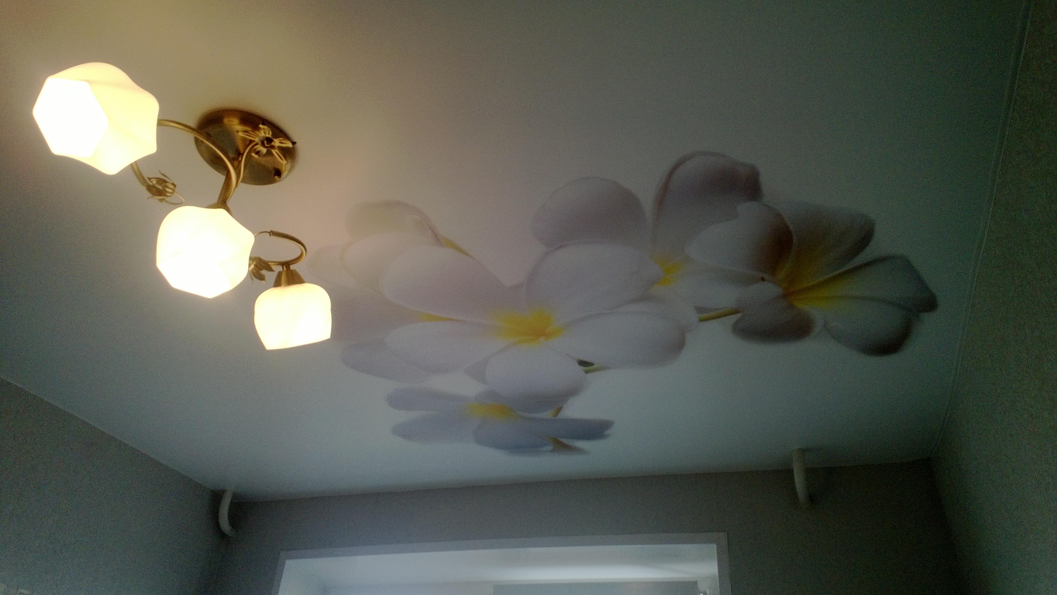 натяжные потолки фото глянцевые  цена двухуровневые тканевые в Нижнем Новгороде