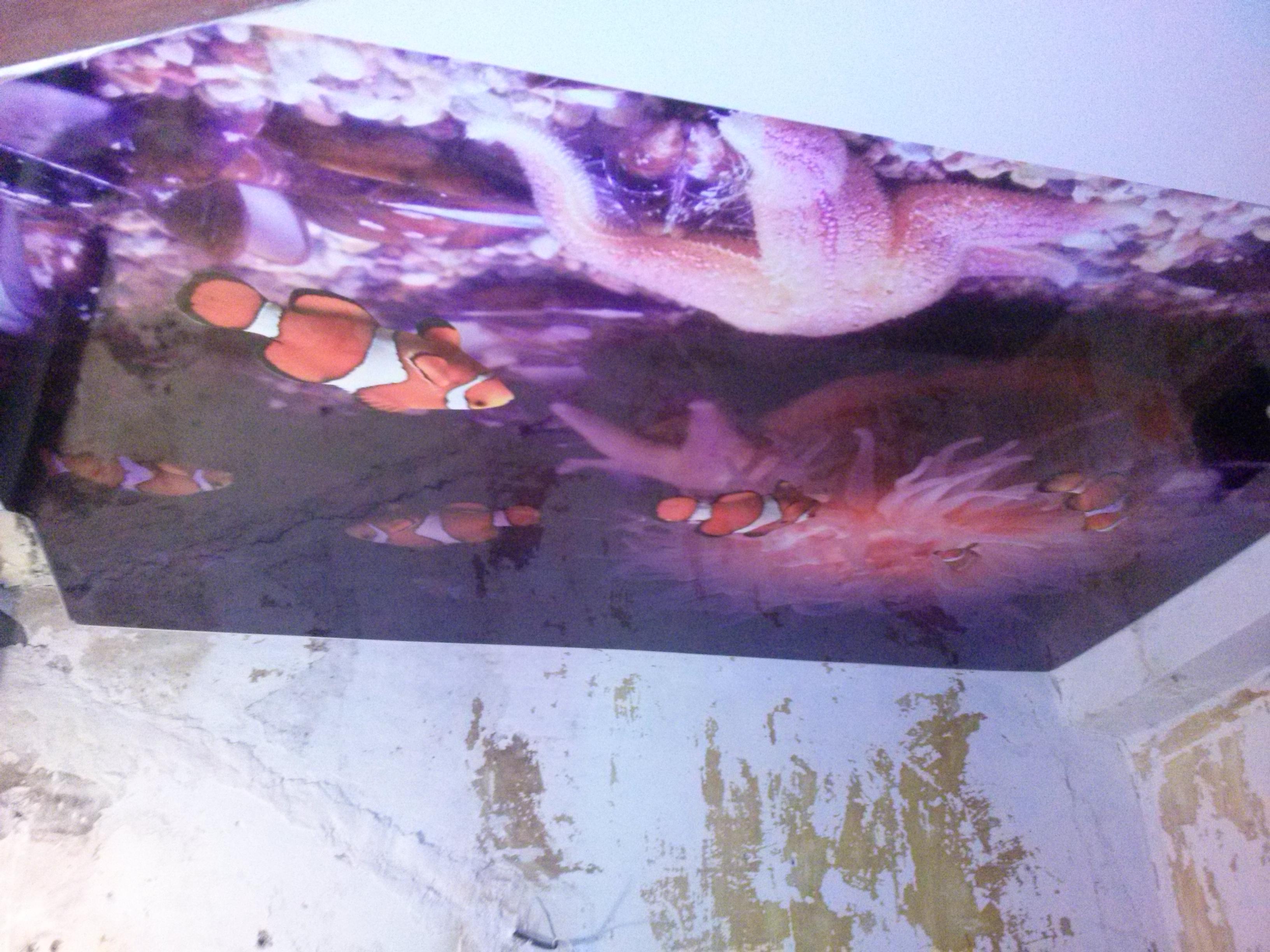 натяжные потолки фото глянцевые тканевые двухуровневые В Воронеже
