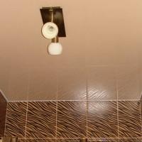 Натяжные потолки Ремонтика для ванной