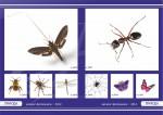 каталог природы натяжные потолки