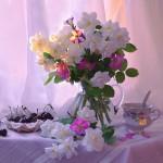 «Ремонтика» поздравляет Викторию Страшнову с Днем Рождения!