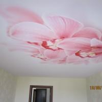 Натяжные потолки в Самаре, заказать и купить натяжные потолки недорого