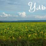 Благодарности из Ульяновска